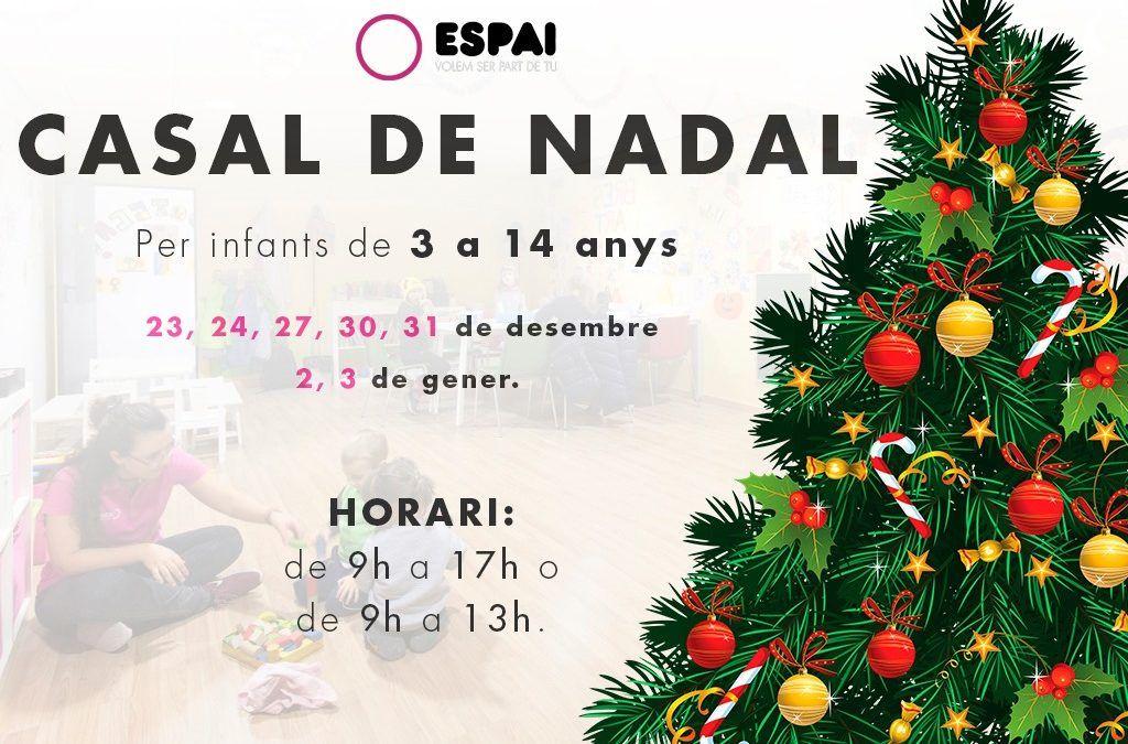 Apunta els teus petits al Casal de Nadal de l'Espai!